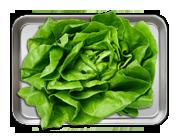 Extra Salata verde